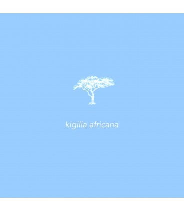 Basix + Kigelia Africana 250ml